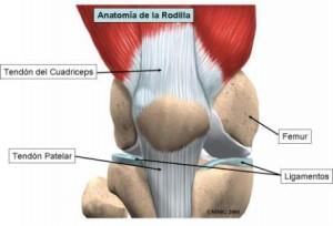 la rodilla de saltador